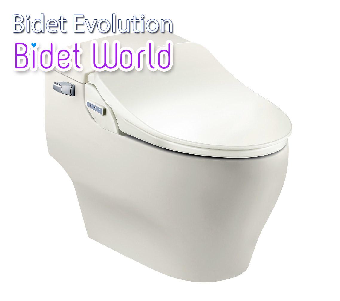 Why Bidet Bidetworld